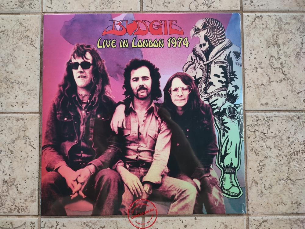 Оцифровка винила: Budgie (1974) Live In London 1974