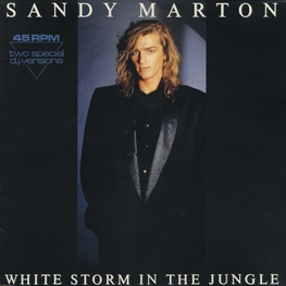 Оцифровка винила: Sandy Marton (1986) White Storm In The Jungle