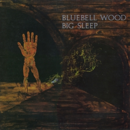 Оцифровка винила: Big Sleep (2) (1971) Bluebell Wood
